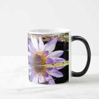 Lila Wasserlilie-Blume in der Blüte Verwandlungstasse