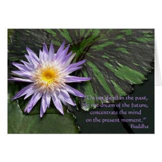 Lila Wasserlilie-Buddha-Zitat Grußkarte