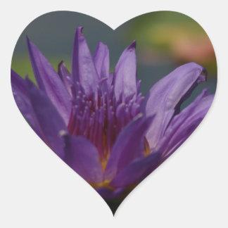 Lila Wasserlilie Herz-Aufkleber