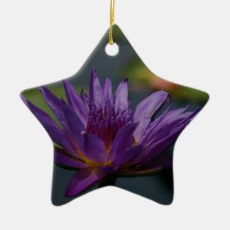 Lila Wasserlilie Keramik Stern-Ornament