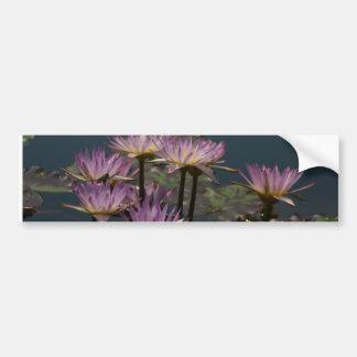 Lila Wasserlilie-Lotos Autoaufkleber