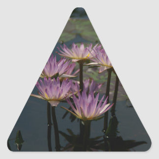 Lila Wasserlilie-Lotos Dreieckiger Aufkleber