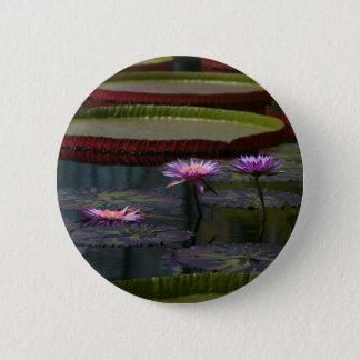 Lila Wasserlilie-Lotos Runder Button 5,7 Cm