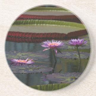 Lila Wasserlilie-Lotos Sandstein Untersetzer