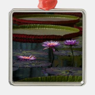 Lila Wasserlilie-Lotos Silbernes Ornament