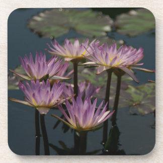 Lila Wasserlilie-Lotos Untersetzer