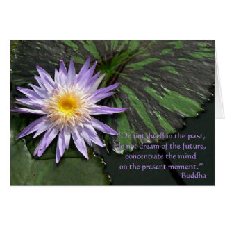 Lila Wasserlilie mit Lilypads Grußkarte