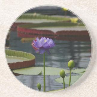 Lila Wasserlilie Sandstein Untersetzer