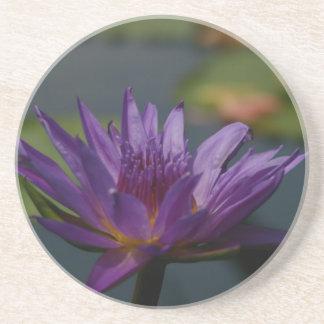 Lila Wasserlilie Untersetzer