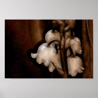 Lilie der Tal-Blume in dunklem Brown Poster