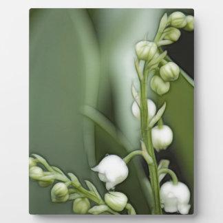 Lilie der Tal-Blumen Fotoplatte