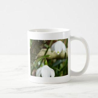 Lilie der Tal-Weiß-Blume Kaffeetasse