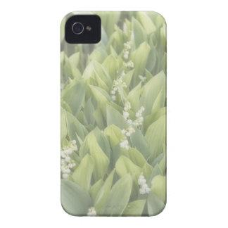 Lilie des Tal-Blumen-Fleckens im Nebel Case-Mate iPhone 4 Hülle