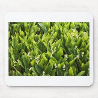 Lilie des Tal-Blumen-Fleckens Mousepad