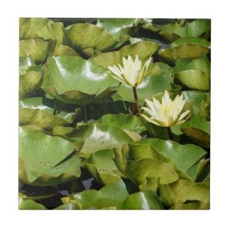 Lilien-Auflagen mit Blüten-Keramik-Foto-Fliese Fliese