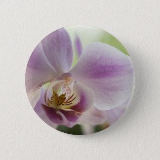 Lilien Blumen Fotografie Button