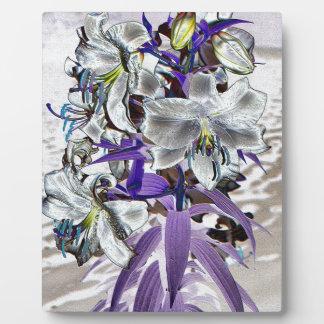 Lilien Fotoplatte