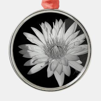 Lilien-Schwarzweiss-Art Silbernes Ornament
