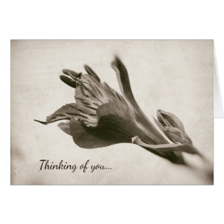 Lilierustikaler Sepia-Blumendenken an Sie Blume Karte