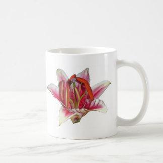 lilly kaffeetasse