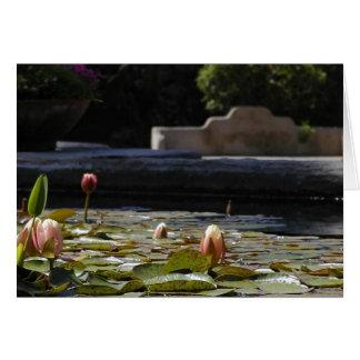 Lillypads Wasserlilie Karte