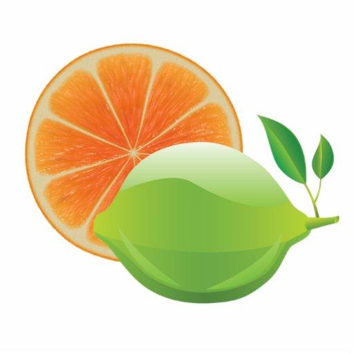 Limon und orange foto ausschnitte