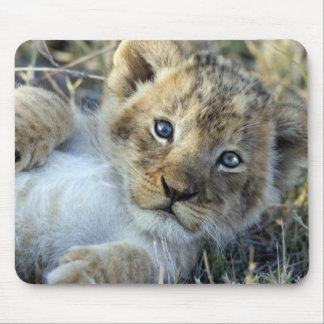 Lion Baby Mousepads