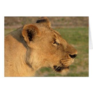 Lions Club, Löwin intensiv (Katavi, Tansania) Karte