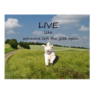 """Live wie jemand verließ dem Tor offene"" Postkarte"