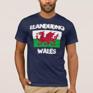 Llandudno, Wales mit Waliser-Flagge T-Shirt