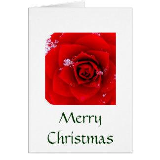 Lo eine Rose E're blühende Karte (Weihnachten)