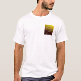 Logo2a 3000 Rev T-Shirt