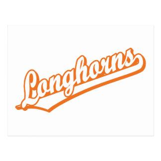 Longhorns in Orange und in weißem Postkarte