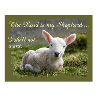 Lord ist mein Schäfer-kleines weißes Lammleer Postkarte