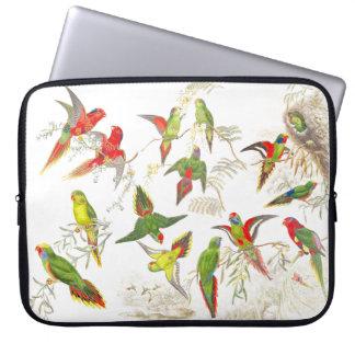 Lorikeet Papageien-Vogel-Tier-Tiere Laptop Sleeve