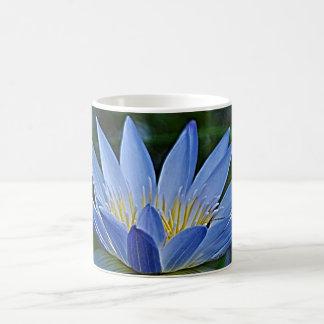 Lotos-Blume und -bedeutung Kaffeetasse