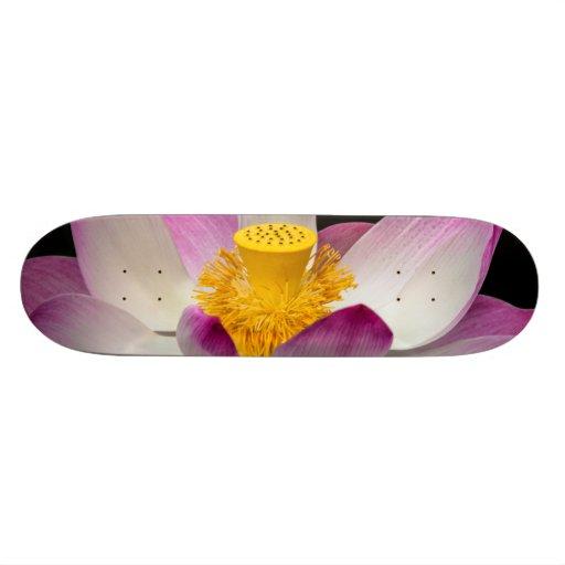Lotos-Blumen-Fotografie-großes Yoga-OM-Geschenk! Personalisiertes Skateboard