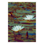 Lotos-Blumen-Plakat