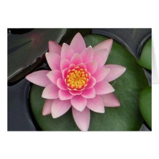 Lotus-Blüte #1 Grußkarte