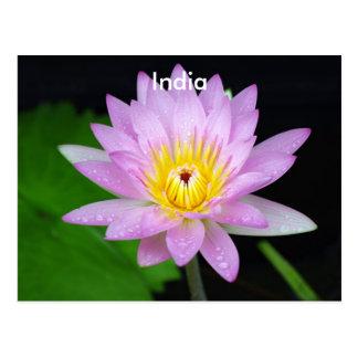 Lotus in Indien Postkarte