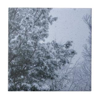 Louisiana-Schnee Keramikfliese