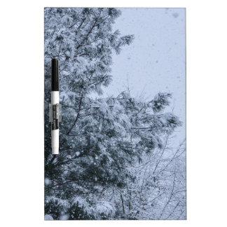 Louisiana-Schnee Memoboard