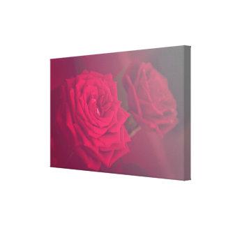 Love Rose Leinwanddruck