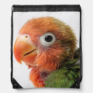 Lovebird-Küken| Agapornis papillero Sportbeutel