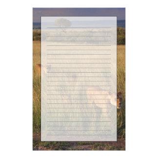 Löwe 2 briefpapier