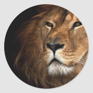 Löwe Runde Sticker