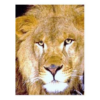 Löwe-Augen Postkarte