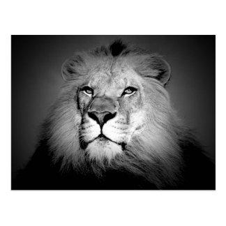 Löwe der König Postkarte