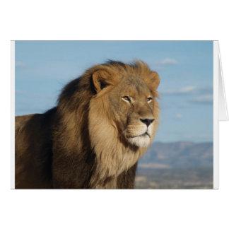 Löwe Grußkarte