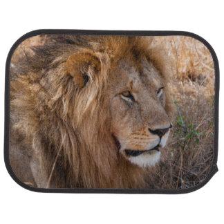 Löwe Maasai Mara nationale Reserve, Kenia Autofußmatte